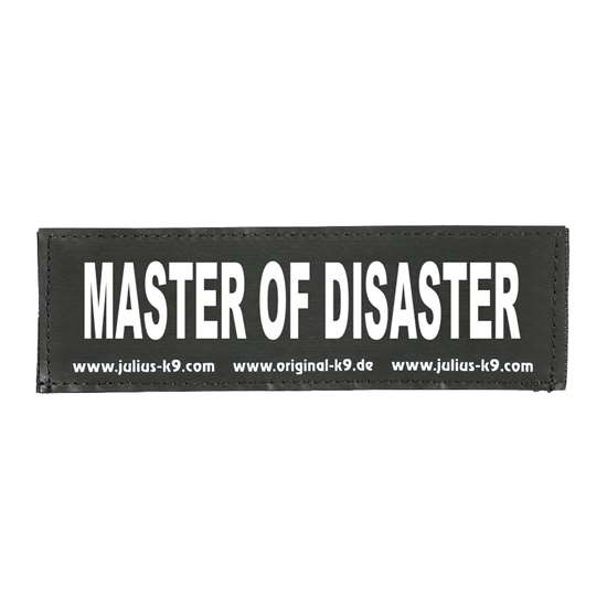 Picture of MASTER OF DISASTER (162LR-K-38658)