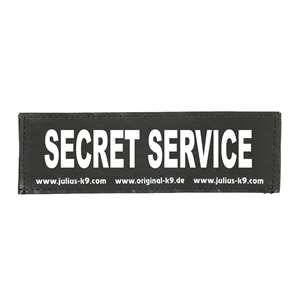Picture of SECRET SERVICE (162LR-K-30461)