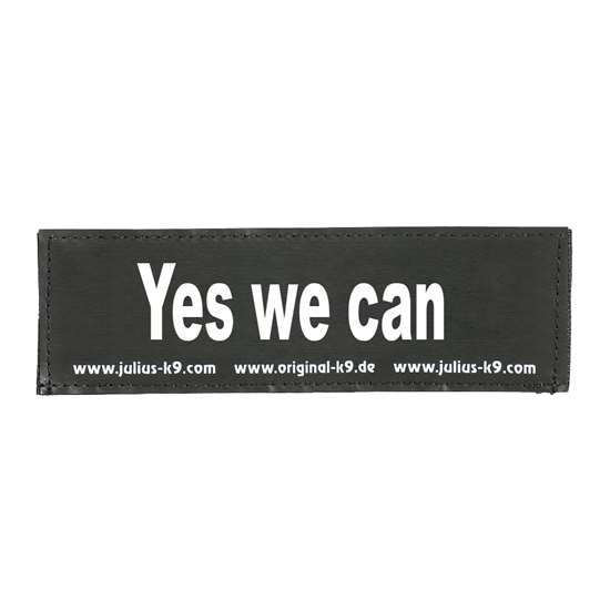 Picture of Yes we can (162LR-K-46769)