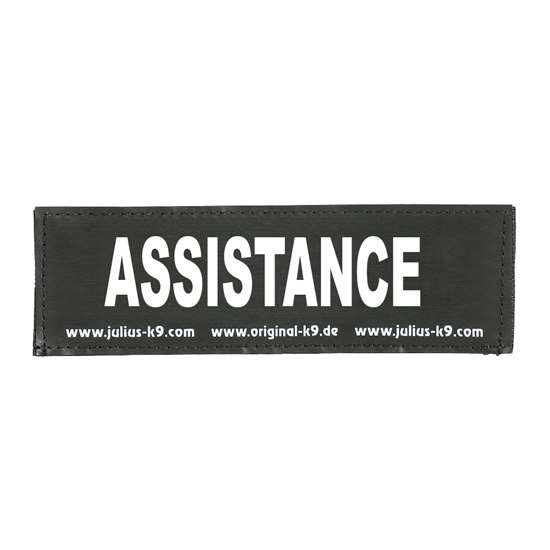 Picture of ASSISTANCE (162LR-G-43638)