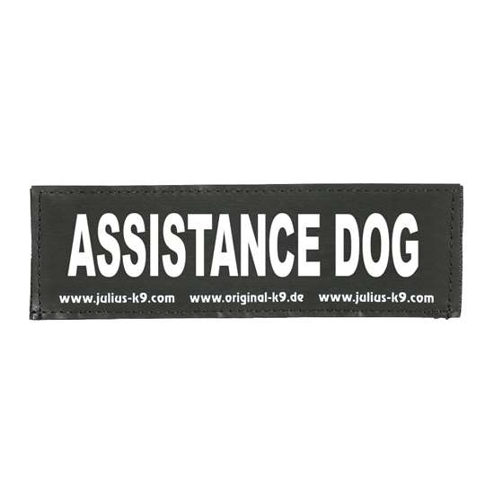 Picture of ASSISTANCE DOG (162LR-G-39242)
