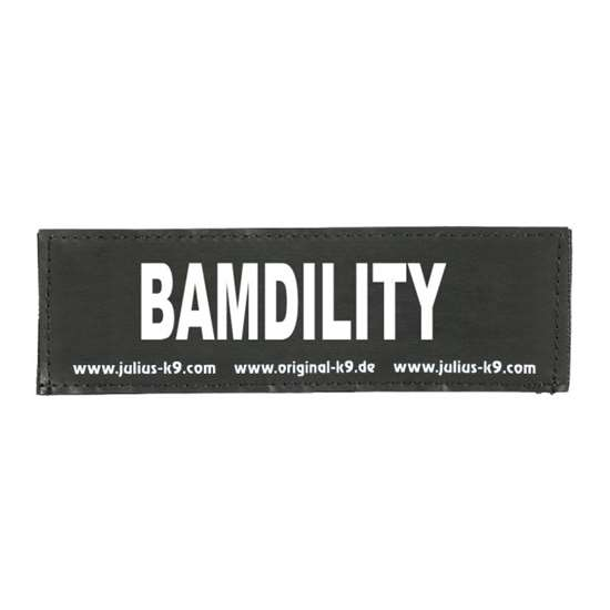 Picture of Bamdility powered by ThinkDog (162LR-G-06473)