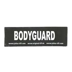Picture of BODYGUARD (162LR-G-31659)