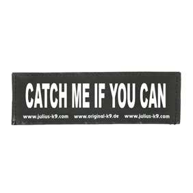Picture of CATCH ME IF YOU CAN (162LR-G-41825)