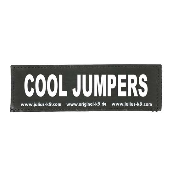 Picture of COOL JUMPERS (162LR-G-31840)