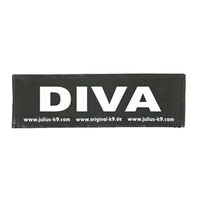 Picture of DIVA (162LR-G-31970)