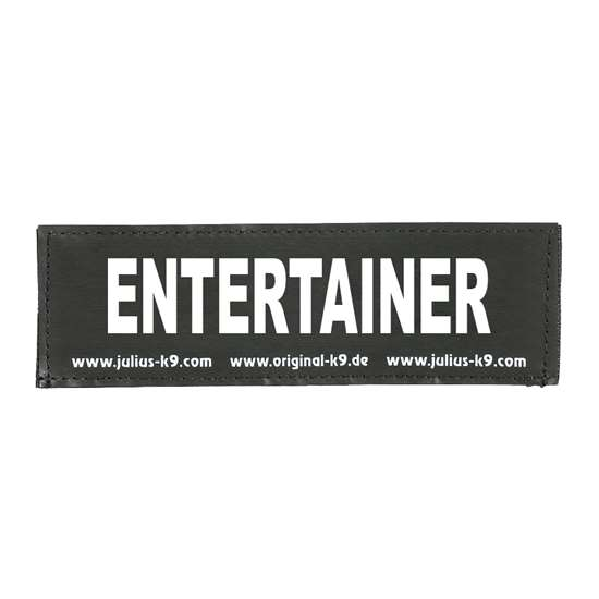 Picture of ENTERTAINER (162LR-G-41849)