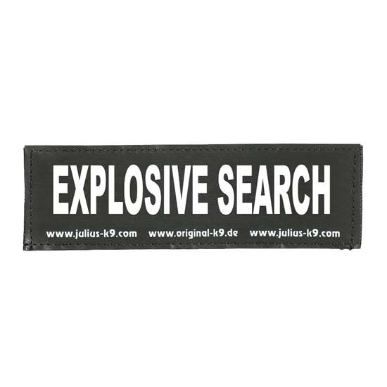 Picture of EXPLOSIVE SEARCH (162LR-G-48121)