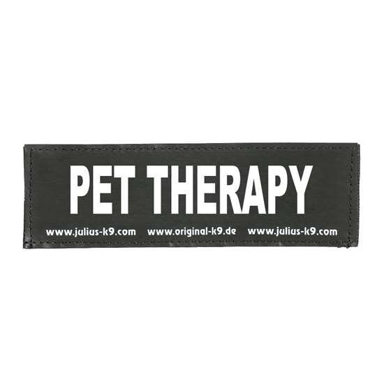 Picture of PET THERAPY (162LR-G-39693)