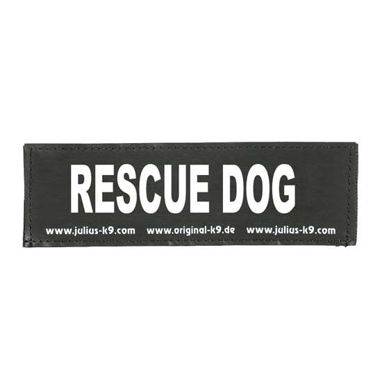Picture of RESCUE DOG (162LR-G-28260)