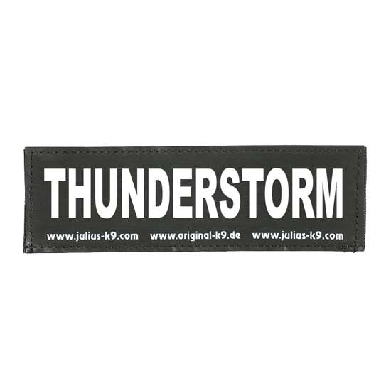 Picture of THUNDERSTORM (162LR-G-34490)