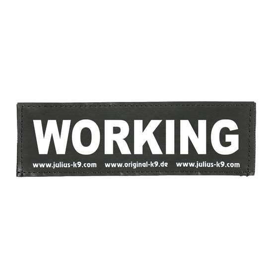 Picture of WORKING (162LR-G-09153)