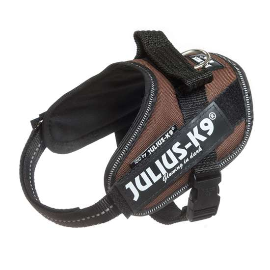 Picture of Chocolate brown, Mini-Mini Julius-K9 IDC® Powerharness