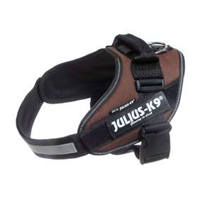 Picture of Chocolate brown, Size 0 Julius-K9 IDC® Powerharness