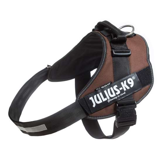 Picture of Chocolate brown, Size 4 Julius-K9 IDC® harness