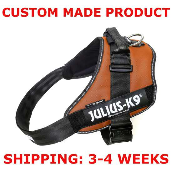 Picture of Kupferorange Size 4 Julius-K9 IDC® Powerharness