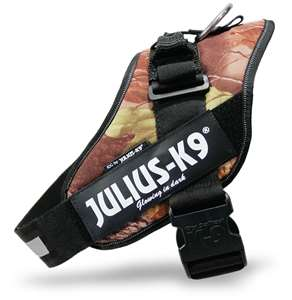Picture of Woodland, Size 4 Julius-K9 IDC® Powerharness