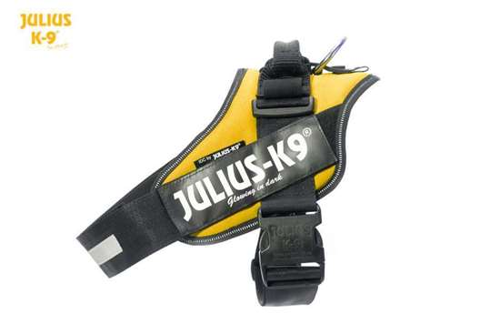 Picture of Sun, Size 3 Julius-K9 IDC® Powerharness