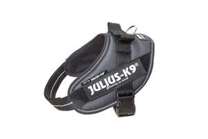 Picture of Grey, Mini Julius-K9 IDC® Powerharness