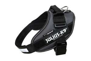 Picture of Grey, Size 0 Julius-K9 IDC® Powerharness