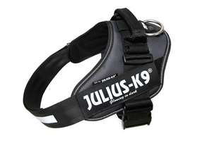 Picture of Grey, Size 1 Julius-K9 IDC® Powerharness