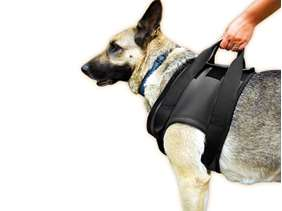 Picture of Rehabilitation harness – Front, Size S (16NEO-VS/S)