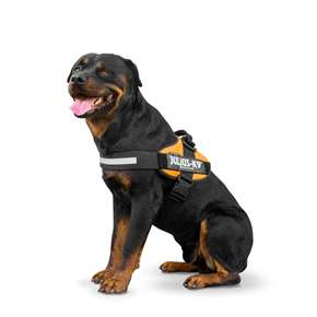 Bloodhound Julius K9 Harness Size 3 Las Vegas K9 Inc