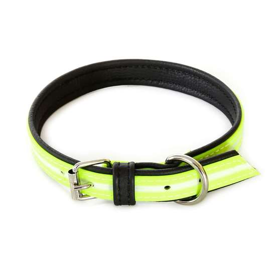 Picture of IDC® Lumino Collar (214HB-SN-50)