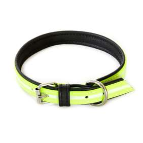 Picture of IDC® Lumino Collar (214HB-SN-70)